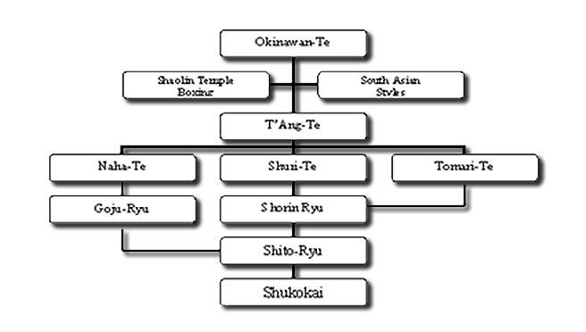 history of karate